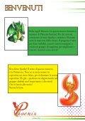 Phoenix Fanzine #9 - Page 3