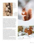 LK0617Flipbook - Page 5
