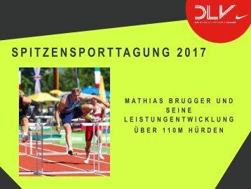 Vortrag_Hürde_Mathias_SST_2017