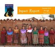 Impact Report 2016-2017