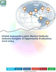 Automotive Paint Market (2017-2024)- Research Nester