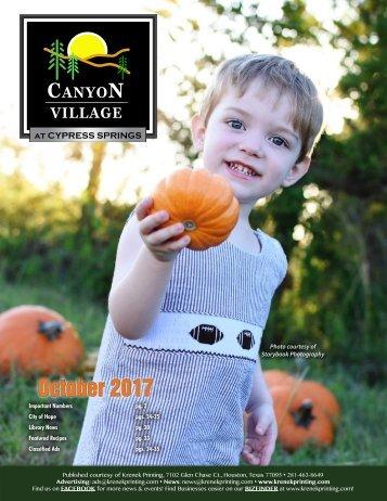 Canyon Village at Cypress Springs October 2017