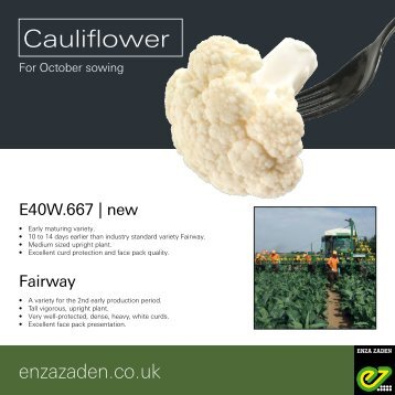 Cauliflower for October sowing