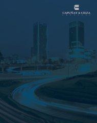 CyC - brochure corporativo 2017 (AF)