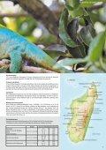 2018-Indischer-Ozean-Katalog - Seite 7