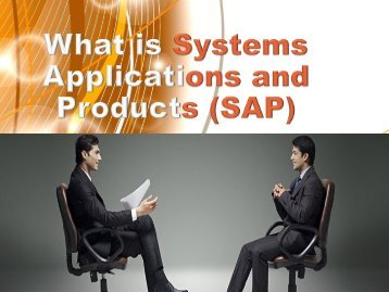 What is Systems Applications and Products