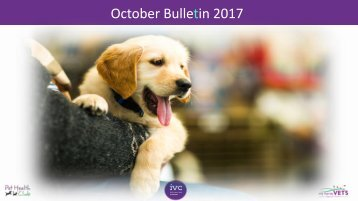 October 2017 Staff bulletin