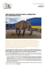 One voice en justice pour la libération de l'éléphante Maya