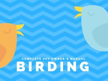 Birding Free Ebook Download