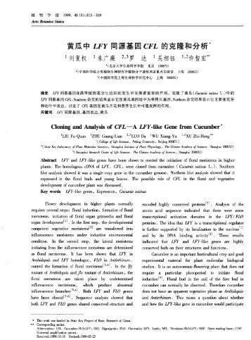 Cloning and Analysis of CFL——A LFY-like Gene from Cucumber*