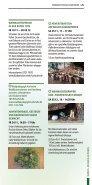 Weihnachtsstadt Karlsruhe - Märkte, Messen & Aktionen - Page 4