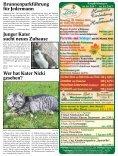 Hofgeismar Aktuell 2017 KW 41 - Seite 5