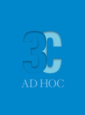 30 jahre Adhoc