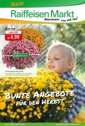 Raiffeisen Markt Prospekt Mannheim KW41 ab14.10.2017