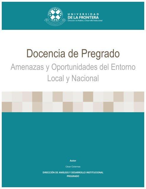 Informe-Analisis-Entorno-Eje-Docencia-Pregrado