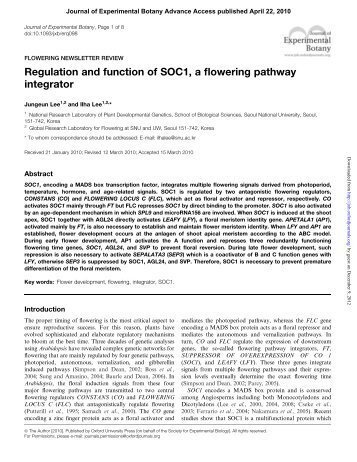 Regulation and function of SOC1, a flowering pathway integrator