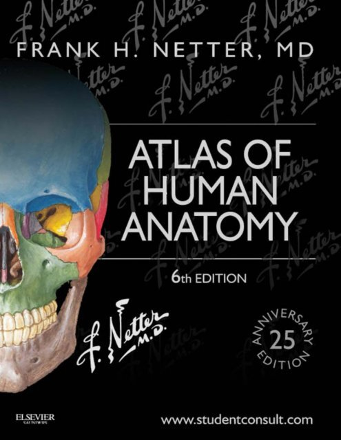 Atlas Of Human Anatomy Sixth Edition Frank H Netter Md