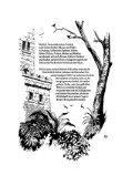 Geschichten aus der Wurzelwelt - von Beate und Fern Weirich - Page 6