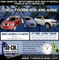 Professional Mobile Auto Detailing in San Diego