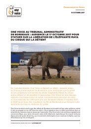 One Voice au tribunal administratif de Bordeaux Audience le 17 octobre 2017 pour statuer sur la libération de l'éléphante Maya du cirque qui la détient