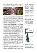 Revistinha do Cine Club Edição 10 - Page 7