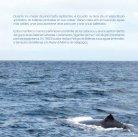 Guía ballenas - Page 5