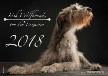 IW-Kalender 2018 FB