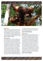 PapuaBorneoBali2 - Page 4