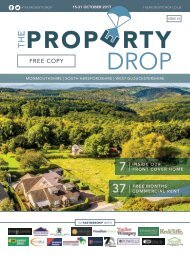 Property Drop Issue 14