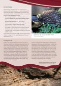 Short-beaked Echidnas - SEQ Catchments - Page 2
