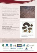 Short-beaked Echidnas - SEQ Catchments - Page 4
