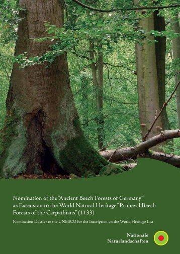Ancient Beech Forests of Germany - Weltnaturerbe Buchenwälder