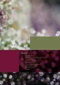 Herb- & Healing Campus - Seite 3