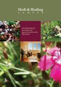 Herb- & Healing Campus - Seite 4