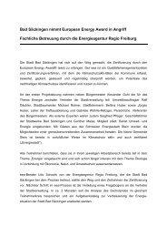 Textvorschlag für Pressemitteilung eea - Stadt Bad Säckingen