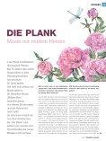 Musiker Magazin 3/2017 - Page 7