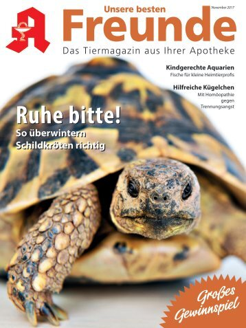 "Leseprobe ""Unsere besten Freunde"" November 2017"
