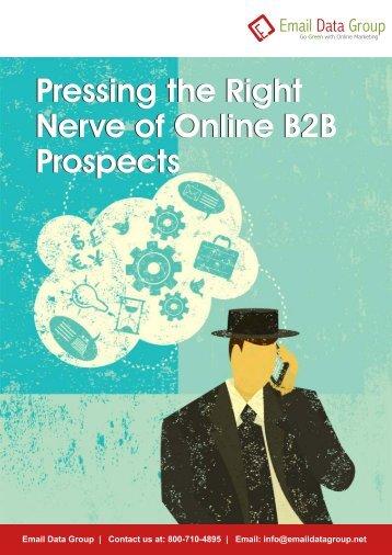Get abundant information of customers using  B2B email address lists