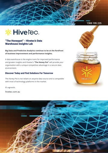 """The Honeypot"" - Hivetec's Data Warehouse Insights Lab"