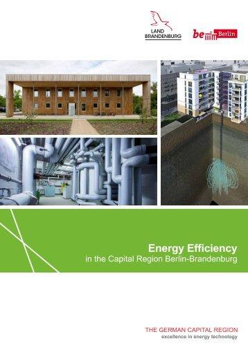 Energy Efficiency in the Capital Region Berlin-Brandenburg