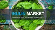 Inulin Market Trends, Share, Revenue, Analysis 2017-2024
