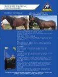 Equestrian Life November 2017 Edition - Page 2