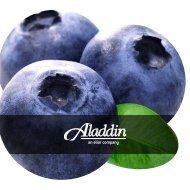 Brochure_K-12 Blueberry_Aladdin_022717_Digital