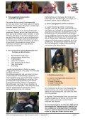 Gliederung - AWO Jugendhilfe und Kindertagesstätten gGmbH - Page 5