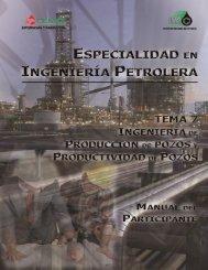 258719363-Ingenieria-de-Produccion-y-Productividad-de-Pozos