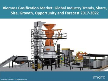 Global Biomass Gasification Market Share, Size, Price Trends and Forecast 2017-2022