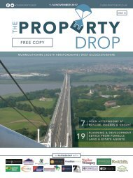 Property Drop Issue 15