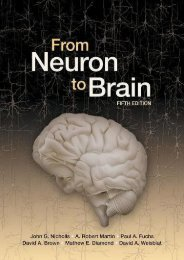 Online Book From Neuron to Brain - All Ebook Downloads