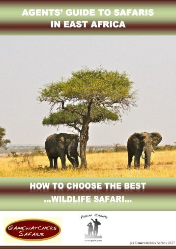 Agent's Guide To Safaris in East Africa