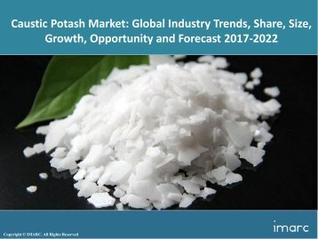 Global Caustic Potash Market Share, Size and Forecast 2017-2022